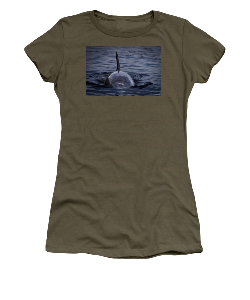 Dolphin Women's T-Shirt featuring the photograph Fins Up by Roger Wedegis
