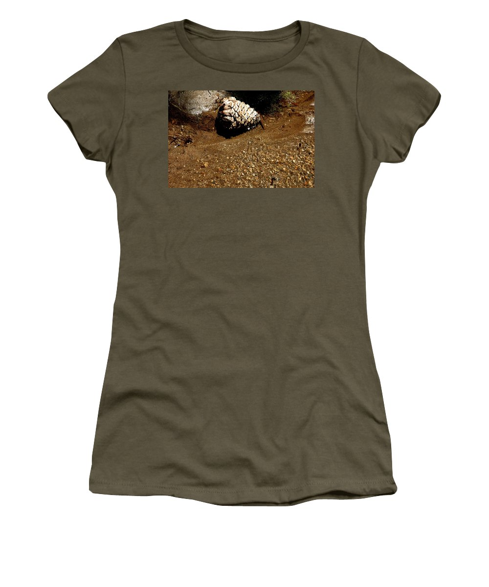 Usa Women's T-Shirt featuring the photograph Fools Gold And Pine Cone by LeeAnn McLaneGoetz McLaneGoetzStudioLLCcom