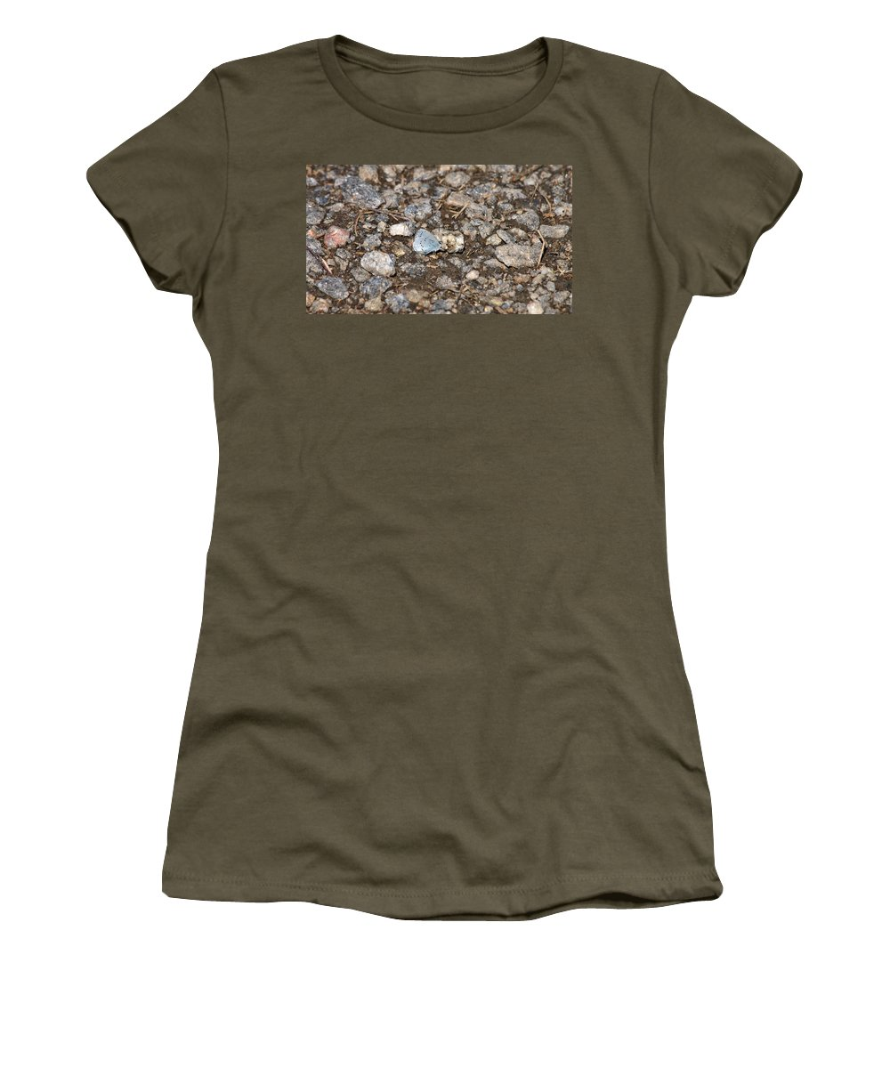 Isosuo Women's T-Shirt (Athletic Fit) featuring the photograph Gossamer-winged Butterfly by Jouko Lehto