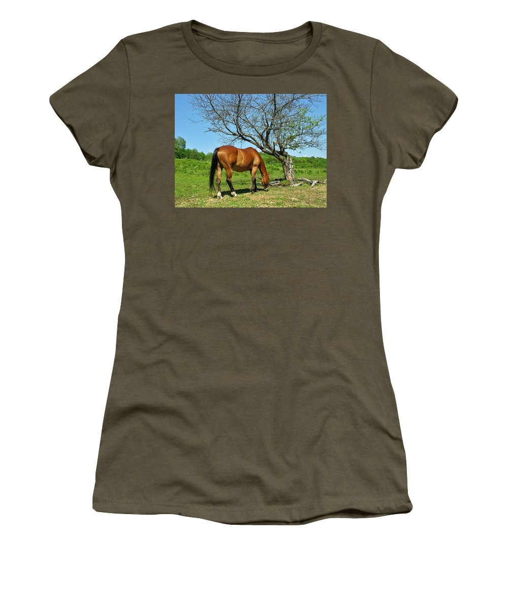 Grazing Horse Women's T-Shirt (Athletic Fit) featuring the photograph Grazing by Sherman Perry