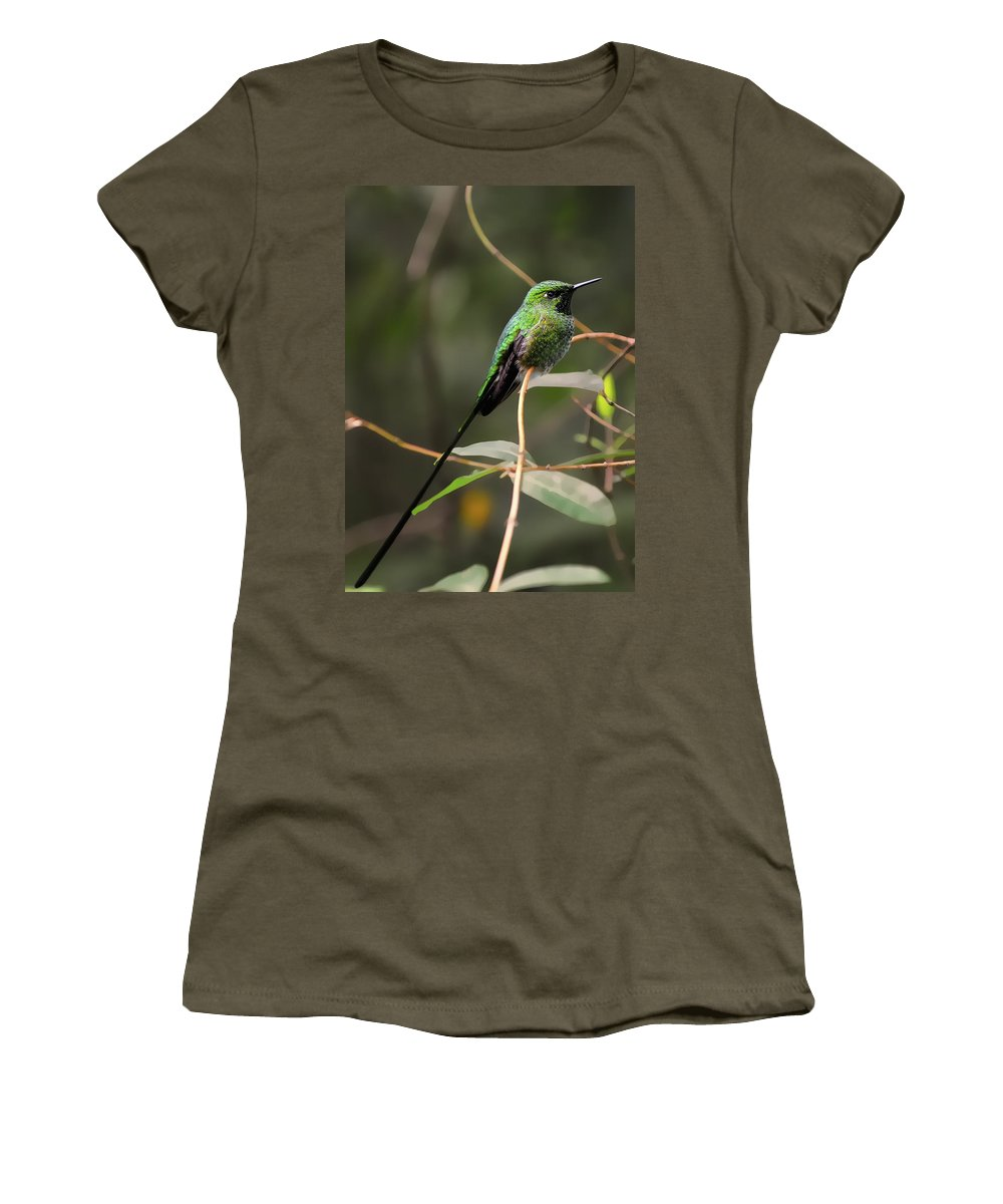 Green Women's T-Shirt (Athletic Fit) featuring the photograph Green Tailed Trainbearer Hummingbird Stylized by Bill Dodsworth
