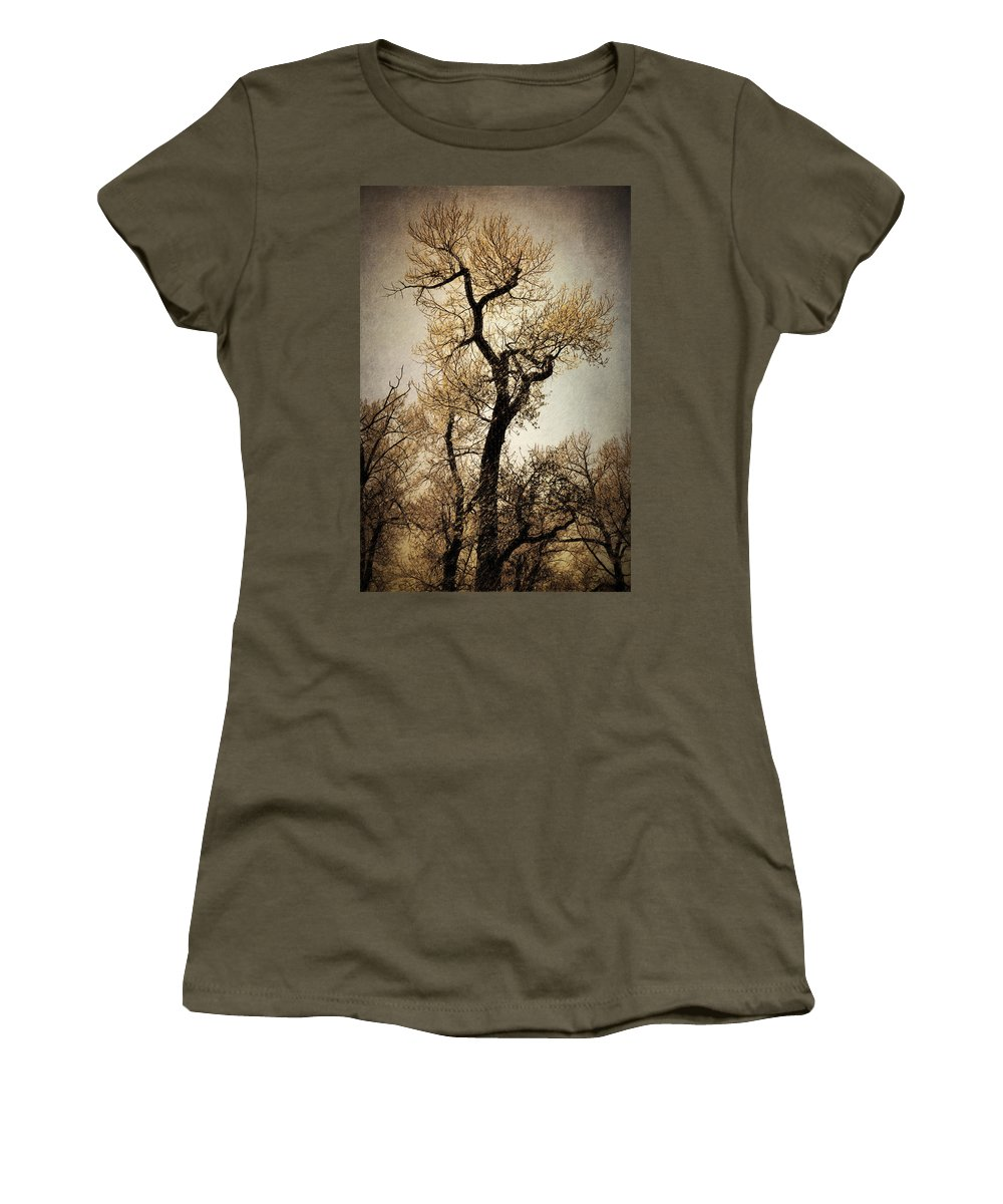 Tree Women's T-Shirt featuring the digital art King Of The Forest by Diane Dugas