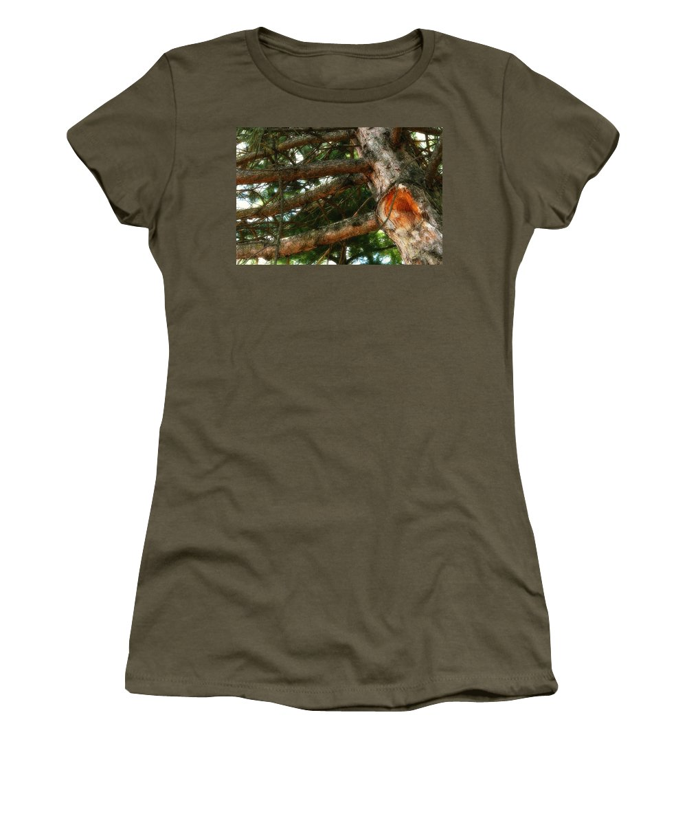 Acrylic Prints; Canvas Prints; Digital; Digital Art; Framed Prints; Greeting Cards; John Herzog; Photo; Photograph; Photography; Posters; Prints; Xdop; Day; Daylight; Daytime; Napanee; Nature; Outdoor; Outdoors; Outside; Horizontal; color Women's T-Shirt featuring the photograph Knot Hole by John Herzog