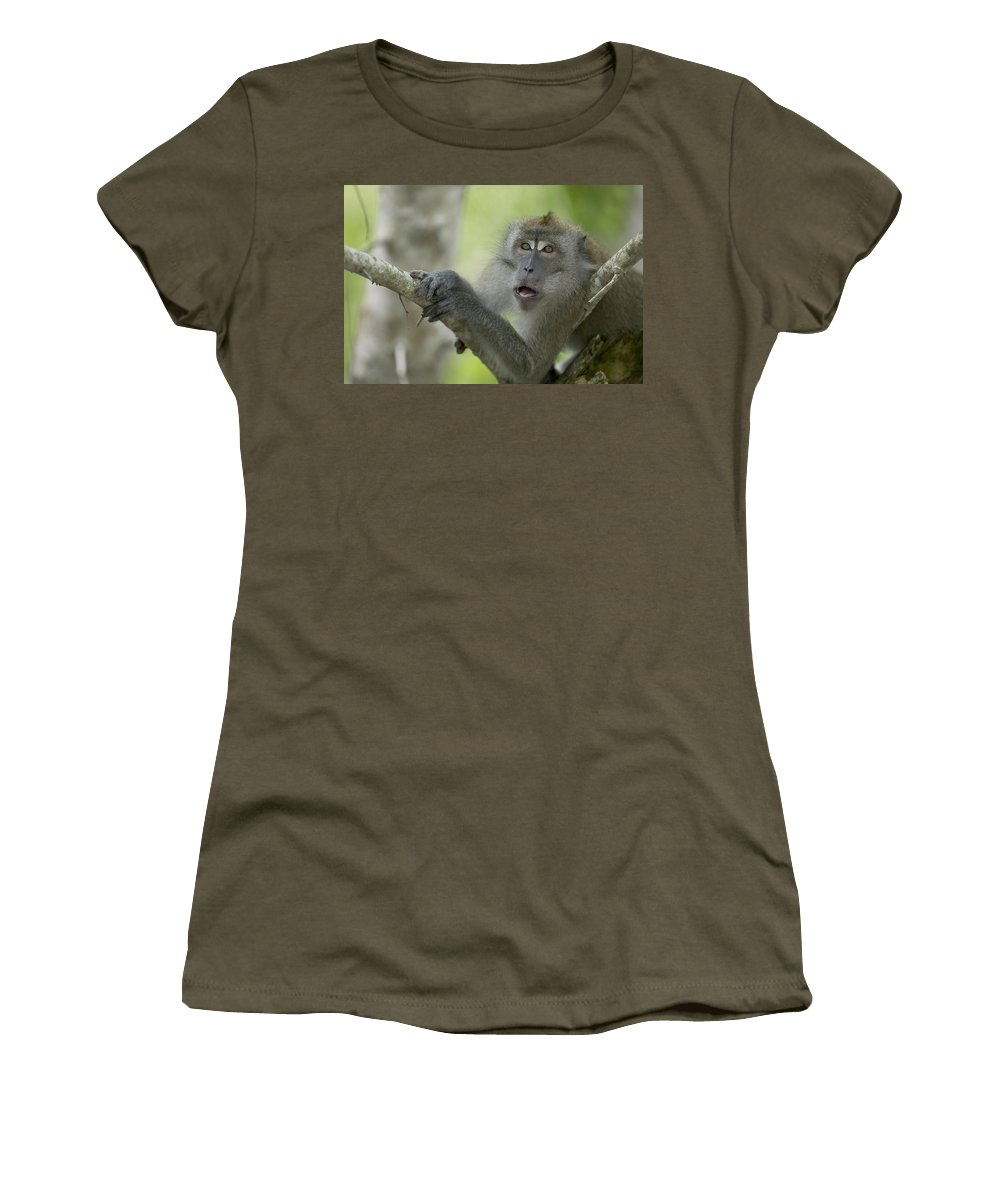 Mp Women's T-Shirt featuring the photograph Long-tailed Macaque Macaca Fascicularis by Cyril Ruoso