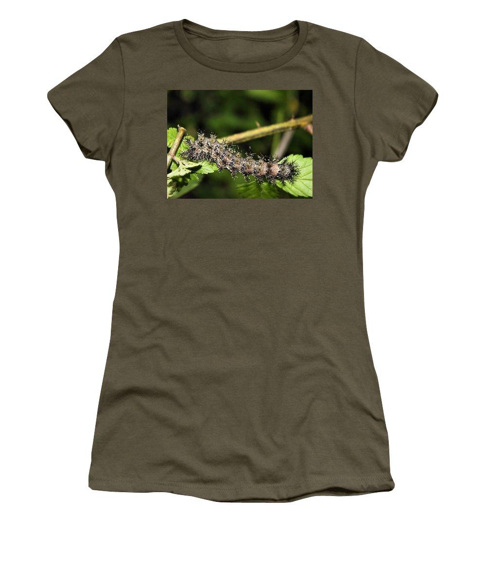 Gypsy Moth Larva Women's T-Shirt featuring the photograph Lymantria Dispar Gypsy Moth Larva by Kristin Elmquist