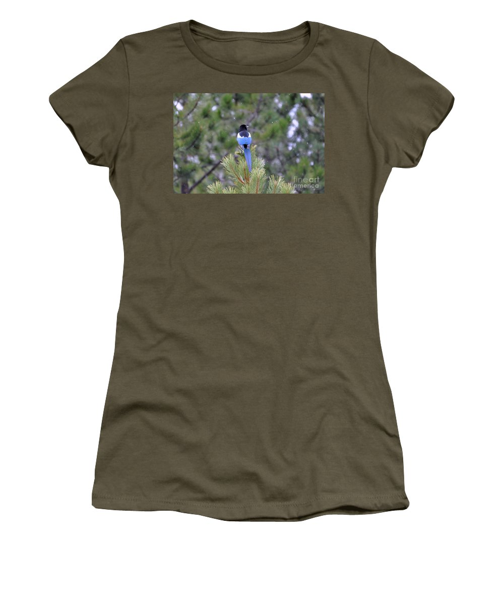 Birds Women's T-Shirt (Athletic Fit) featuring the photograph Magpie In Snow by Dorrene BrownButterfield