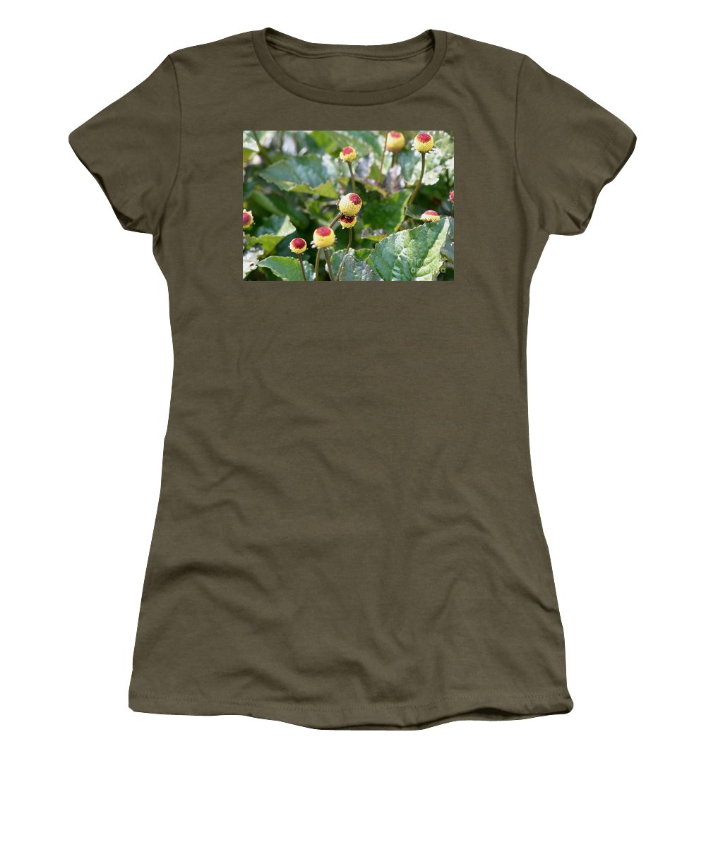 Plants Women's T-Shirt featuring the photograph Olive Garden by Living Color Photography Lorraine Lynch
