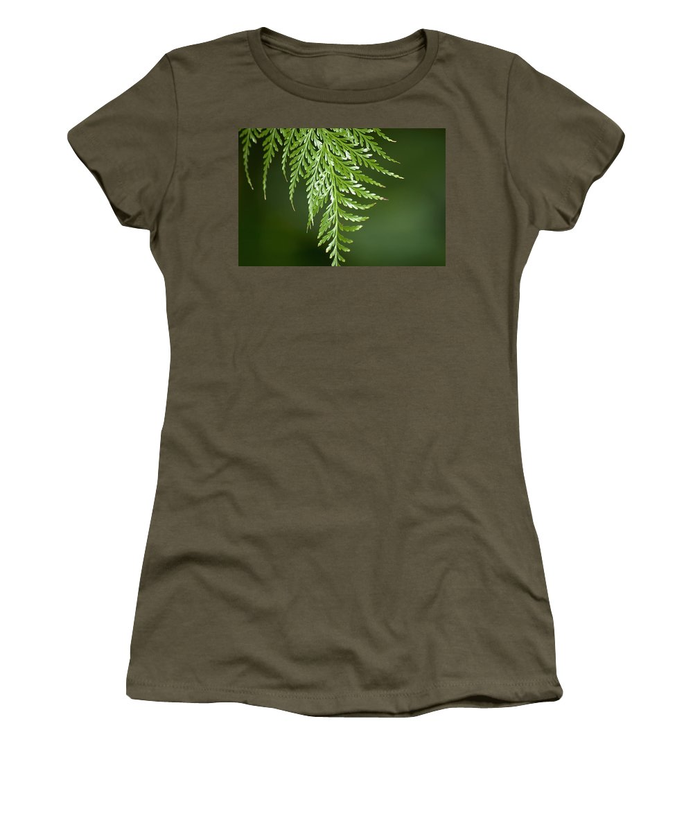 Fern Women's T-Shirt featuring the photograph One Hanging Fern by Carolyn Marshall