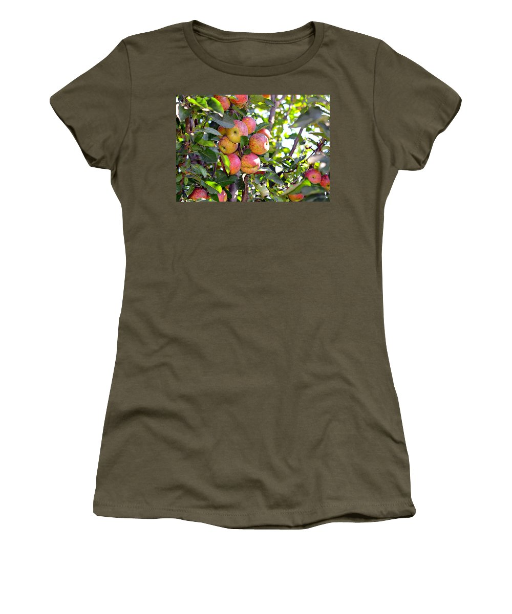 Agricultural Women's T-Shirt featuring the photograph Organic Apples In A Tree by Susan Leggett