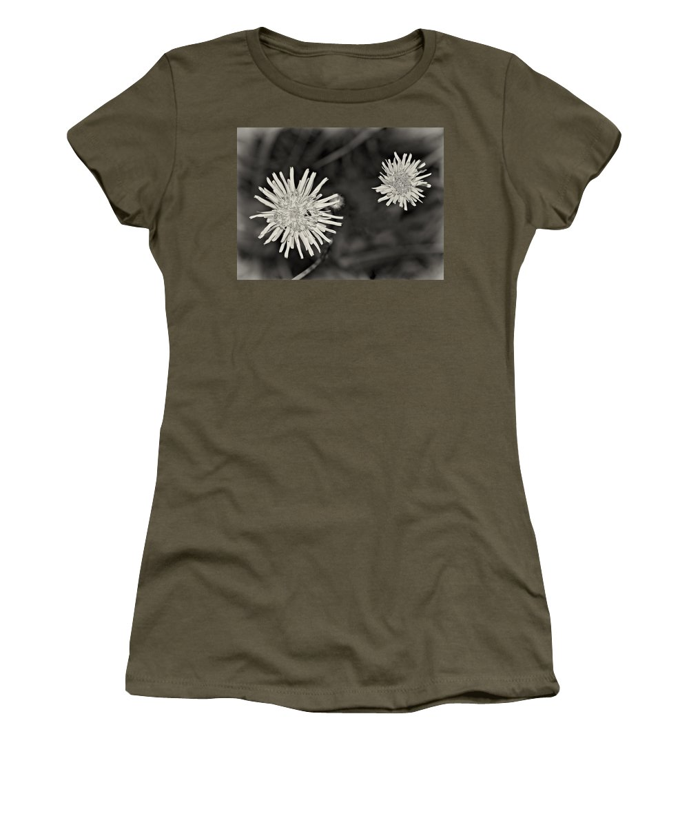 Lowers Women's T-Shirt featuring the photograph Perennial Sow-thistle Monochrome by Steve Harrington