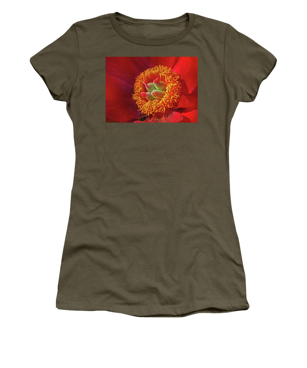 Red Peony Women's T-Shirt featuring the photograph Red Peony by Dave Mills