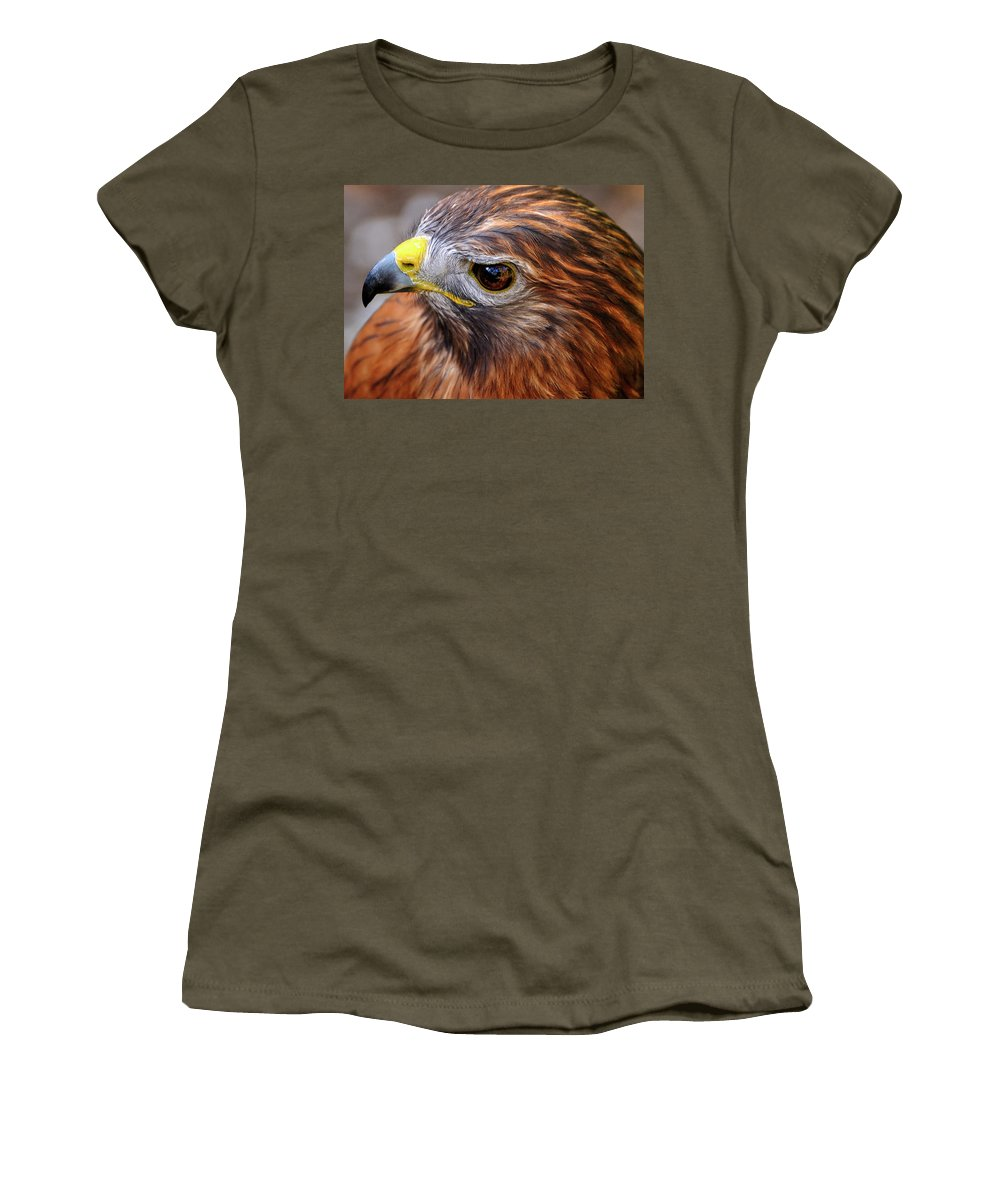 Red-tailed Women's T-Shirt featuring the photograph Red-tailed Hawk Close Up by Bill Dodsworth