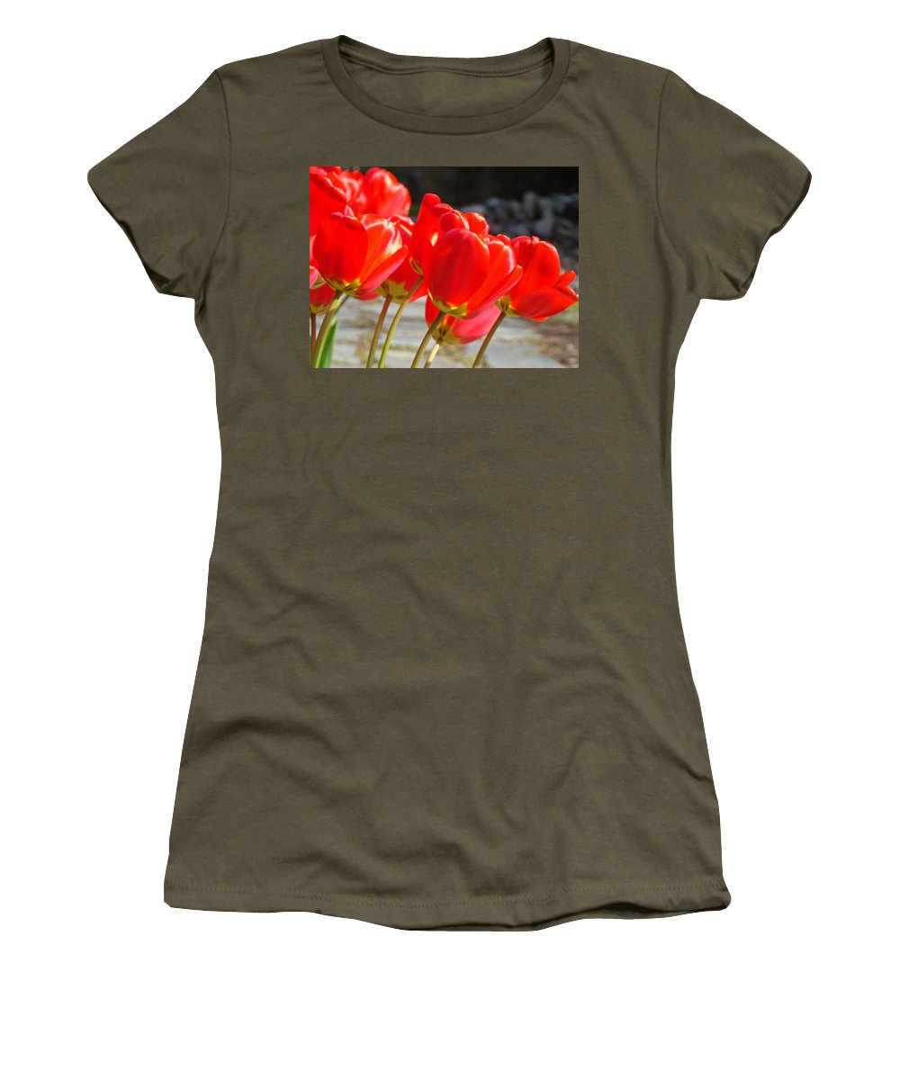 Tulip Women's T-Shirt featuring the photograph Red Tulip Flowers Art Prints Spring Florals by Baslee Troutman