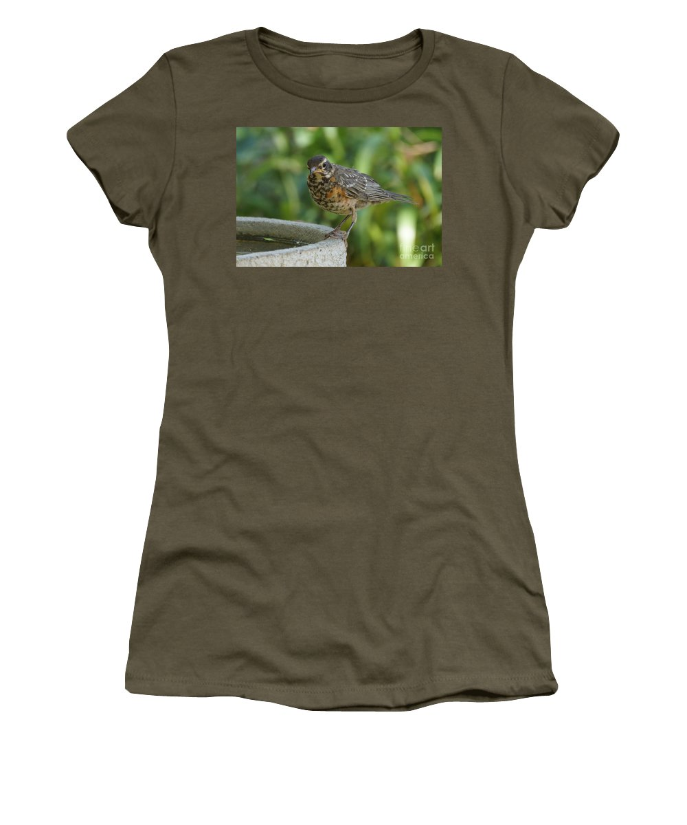Robin Women's T-Shirt featuring the photograph Robin Contemplating Getting In by Lori Tordsen