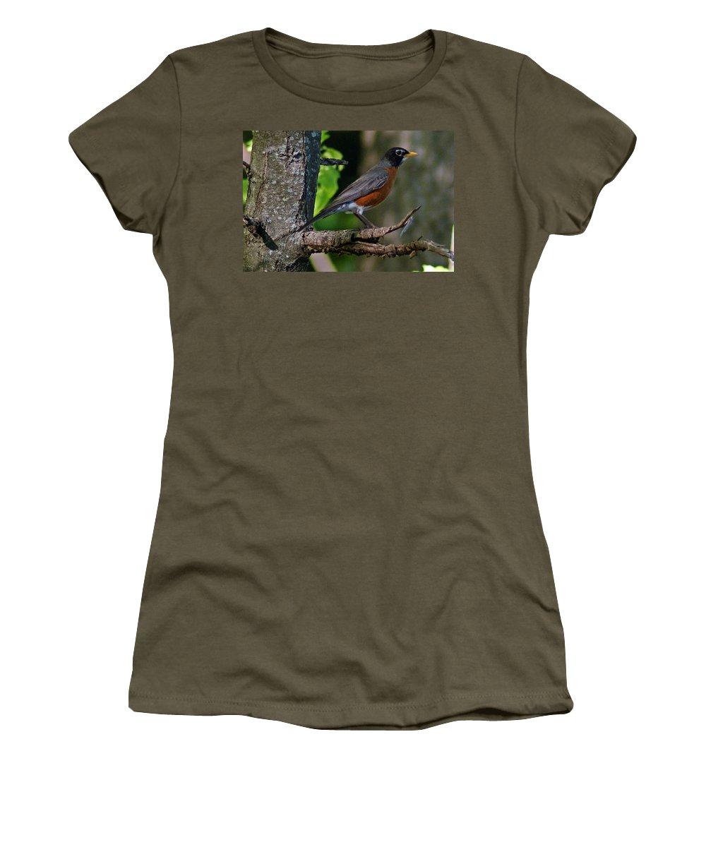 Robin Women's T-Shirt featuring the photograph Robin I by Joe Faherty