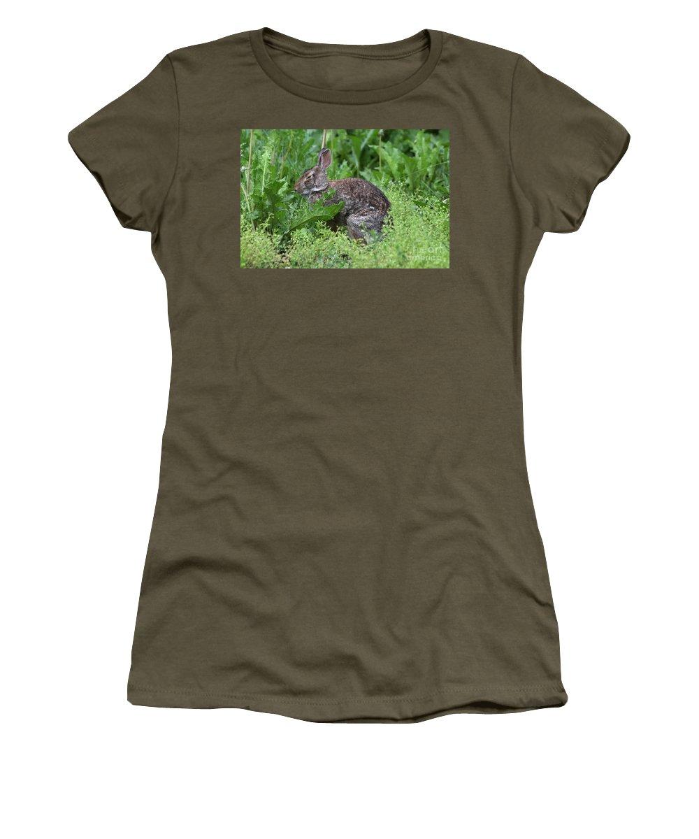 Wildlife Women's T-Shirt featuring the photograph Sleepy Time by Lori Tordsen