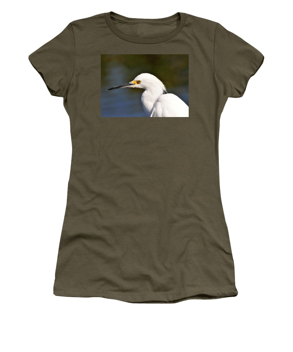 Snowy Women's T-Shirt featuring the photograph Snowy Egret Close Up by Bill Dodsworth