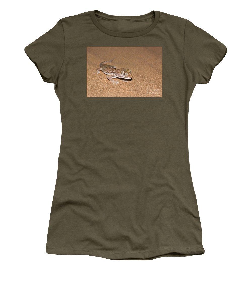 Gecko Women's T-Shirt featuring the photograph Stenodactylus Petrii Or Dune Gecko by Alon Meir