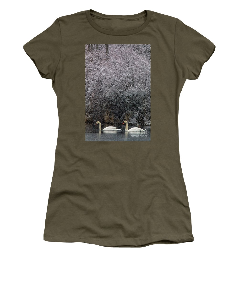 Winter Women's T-Shirt featuring the photograph Swans At Mill Pond Yarmouth On Cape Cod by Matt Suess