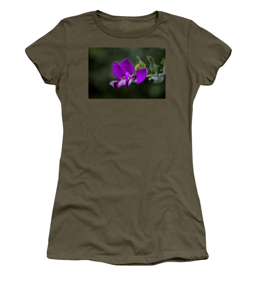 Flower Women's T-Shirt (Athletic Fit) featuring the photograph The Color Purple V2 by Douglas Barnard