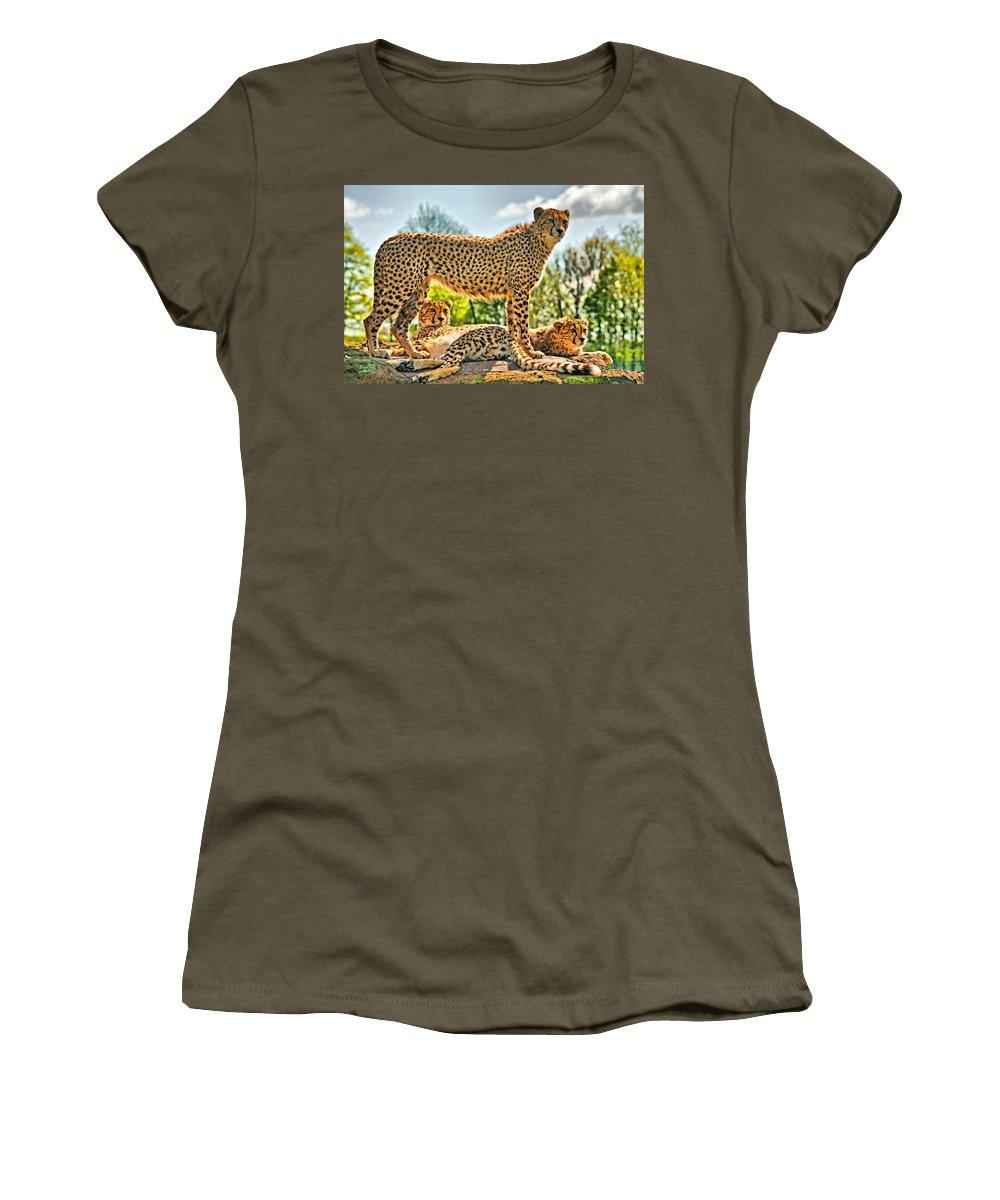 Cheetah Women's T-Shirt (Athletic Fit) featuring the photograph Three Cheetahs by Chris Thaxter