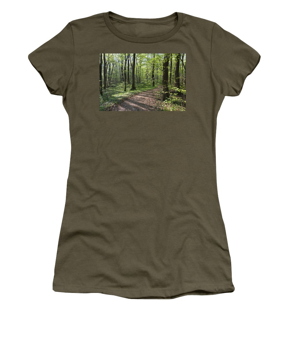Mp Women's T-Shirt featuring the photograph Trail Through Spring Forest Bavaria by Konrad Wothe