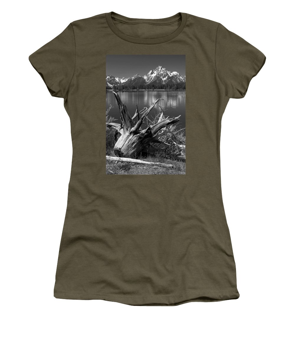 Art Women's T-Shirt featuring the photograph Tree Stump On The Shore Of Lewis Lake At Yellowstone by Randall Nyhof