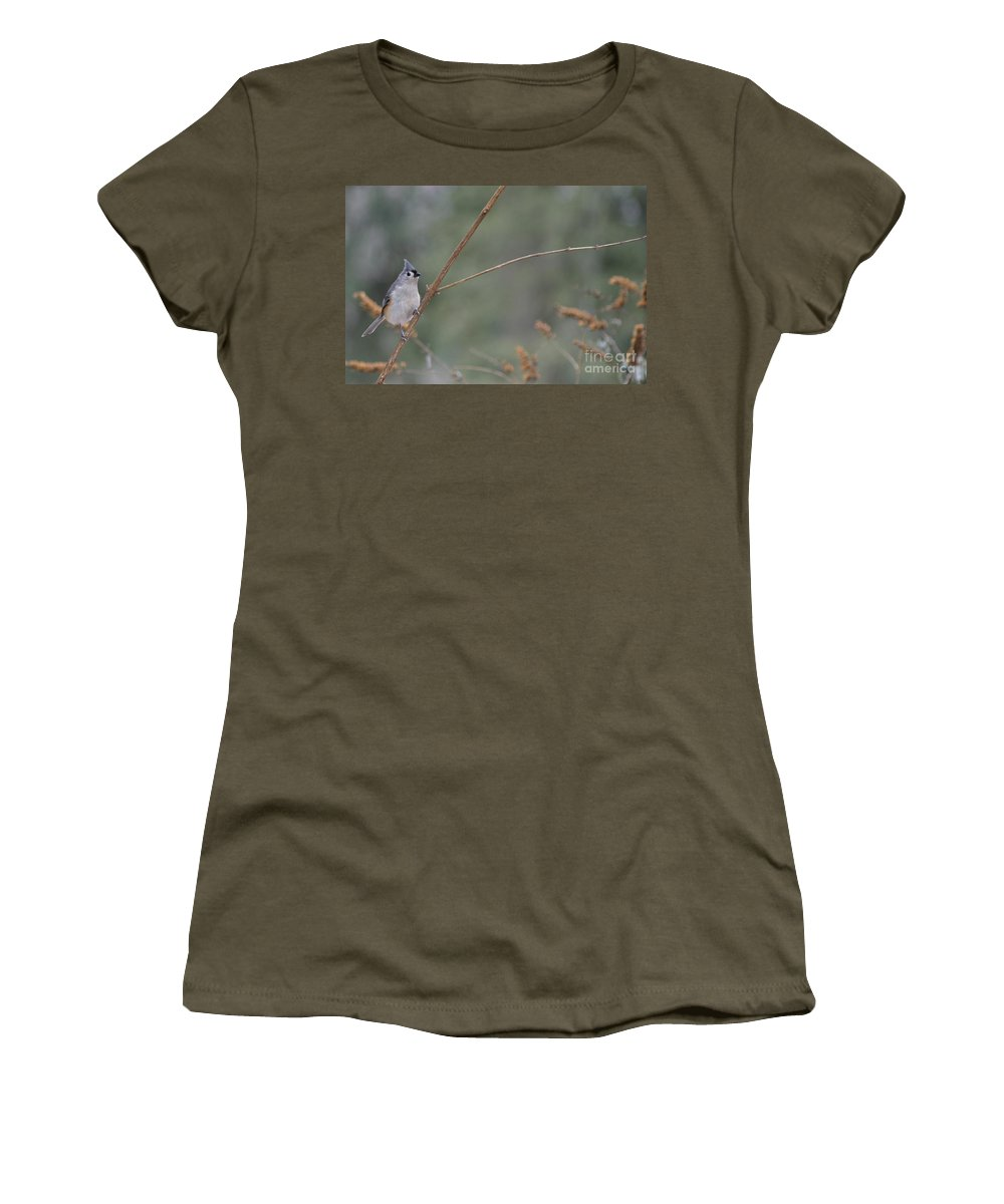Bird Women's T-Shirt featuring the photograph Tufted Titmouse by Living Color Photography Lorraine Lynch