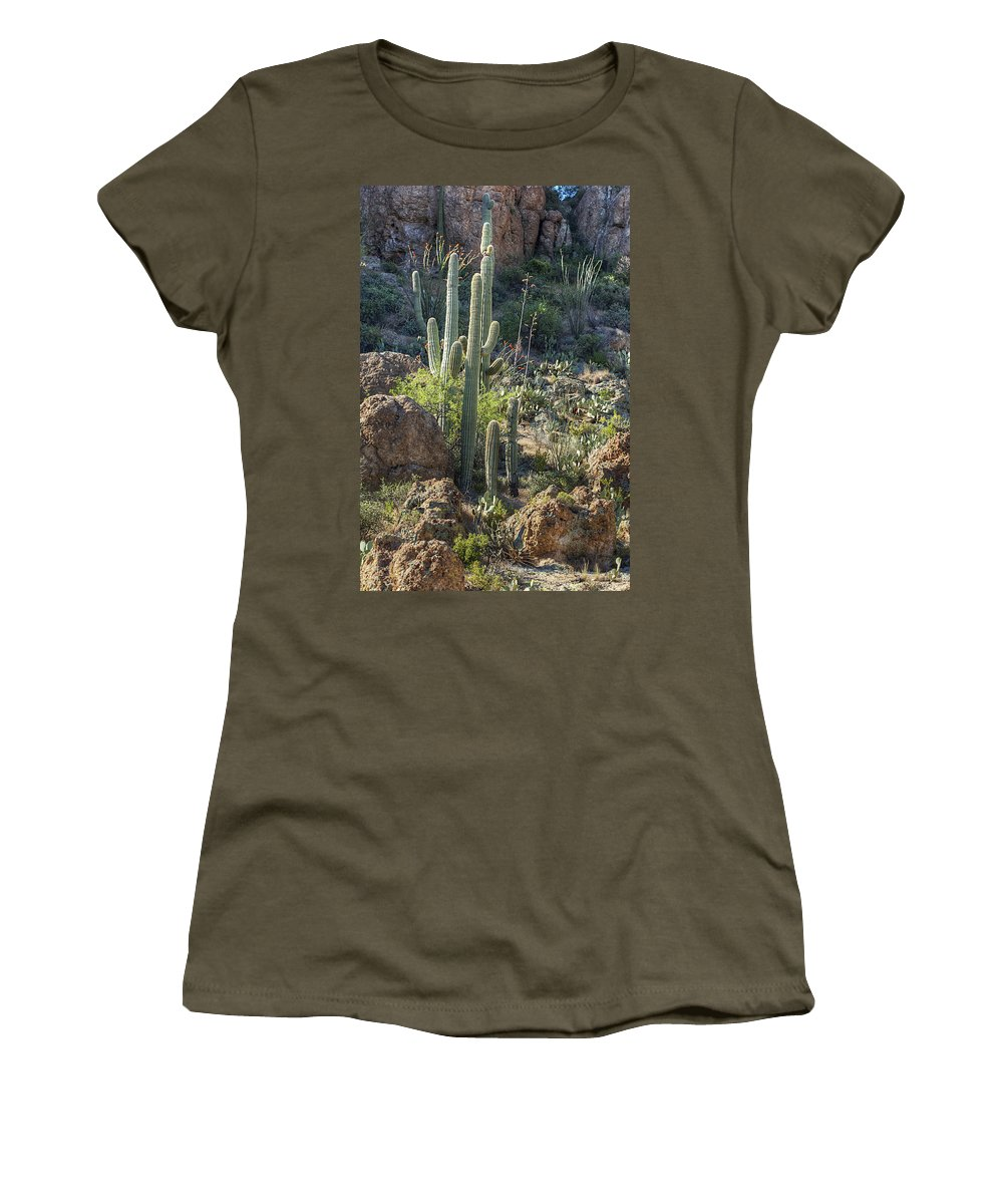 Landscape Women's T-Shirt (Athletic Fit) featuring the photograph Visiting by Phyllis Denton