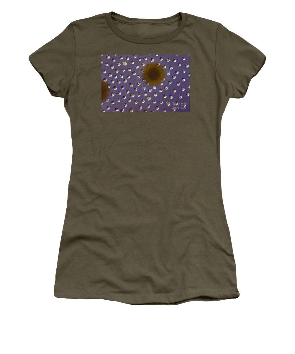 Science Women's T-Shirt featuring the photograph Volvox Sp. Algae Lm by M. I. Walker