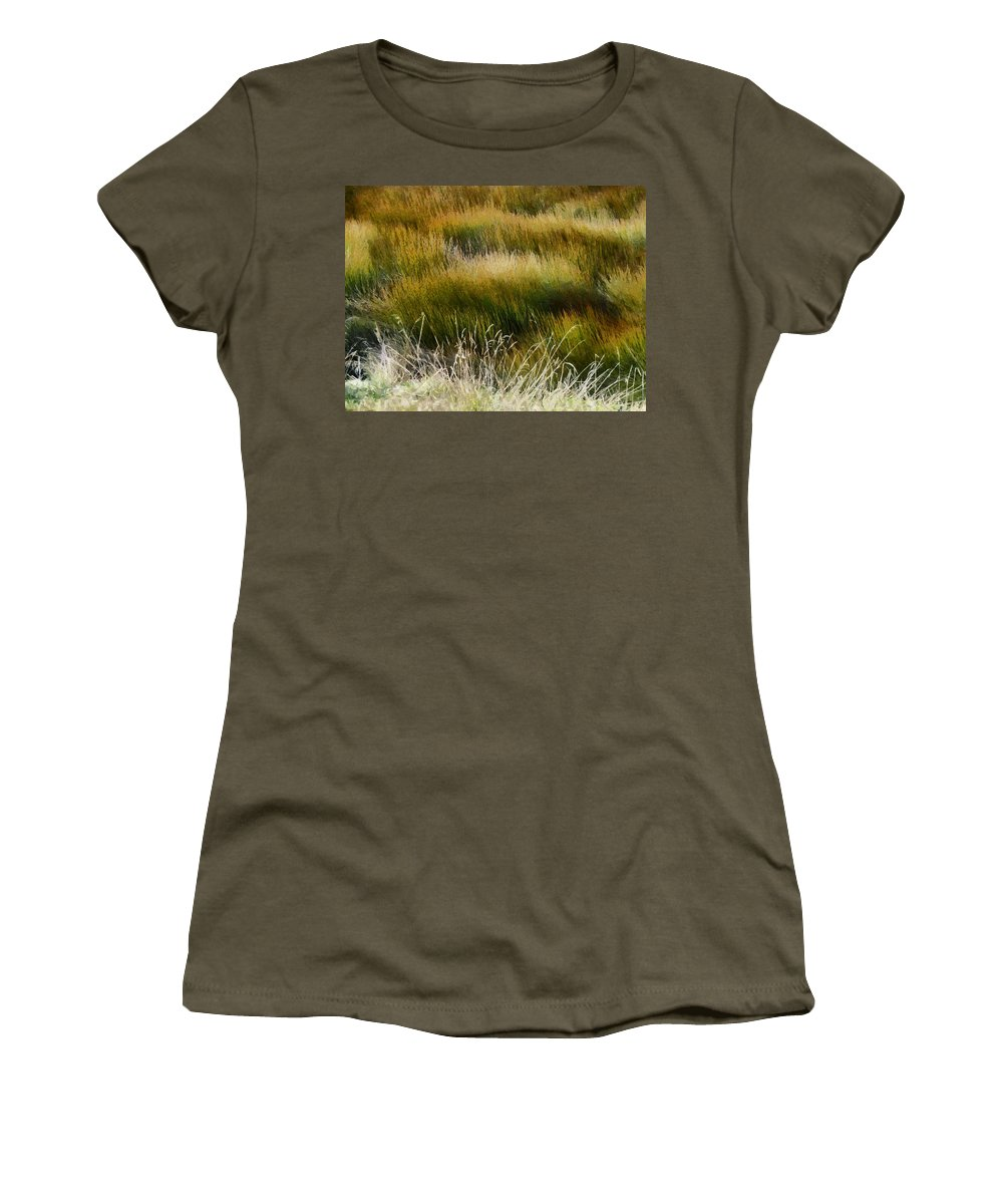 Wet And Dry Women's T-Shirt featuring the photograph Wet And Dry by Steve Taylor