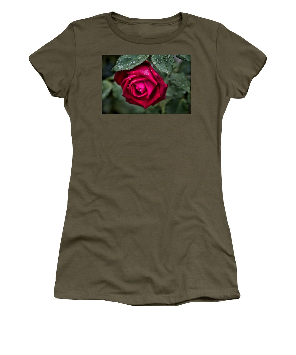 Rose Women's T-Shirt featuring the photograph Wet Weather Rose by Douglas Barnard