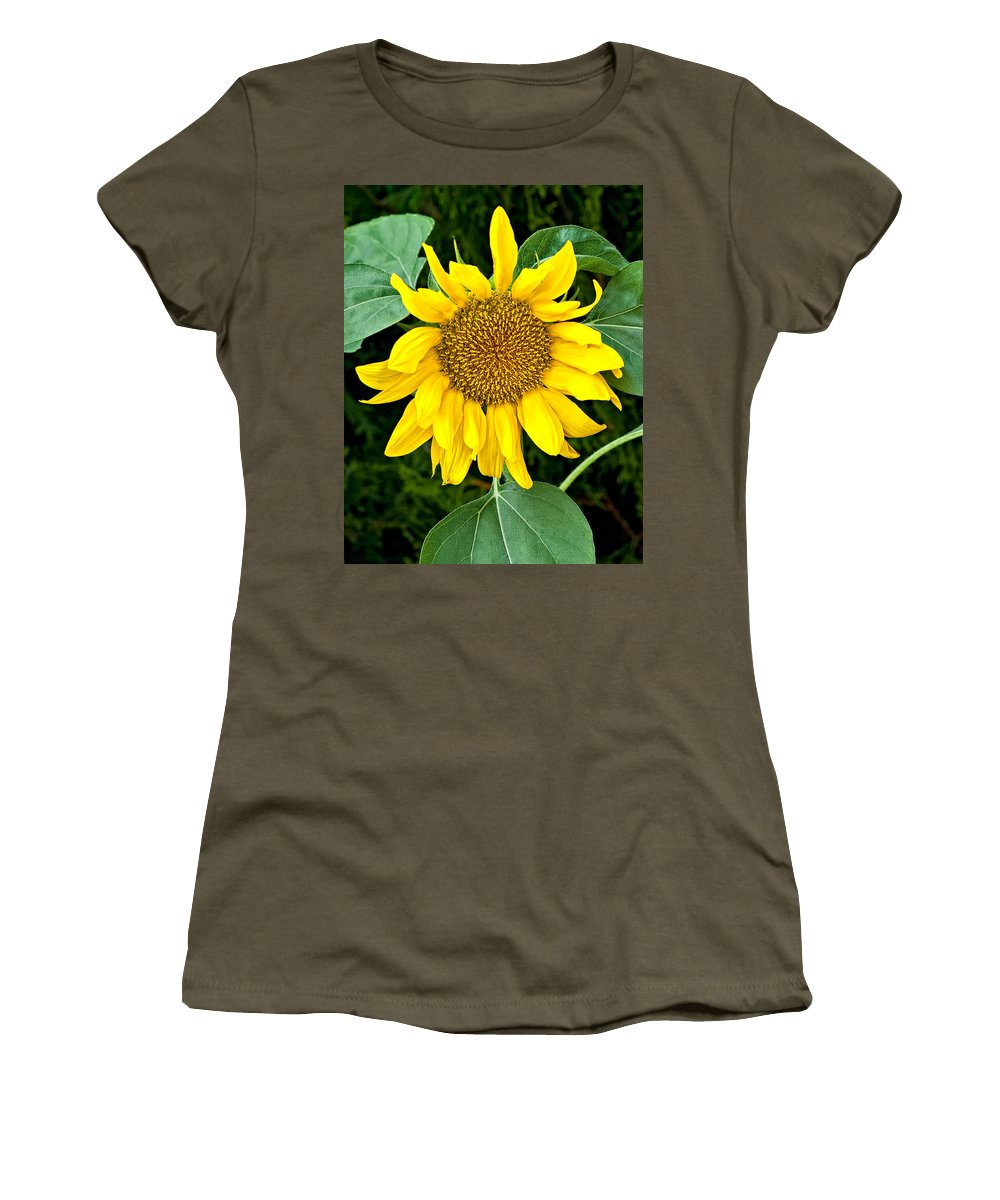 Flowers Women's T-Shirt featuring the photograph Wistful One by Steve Harrington