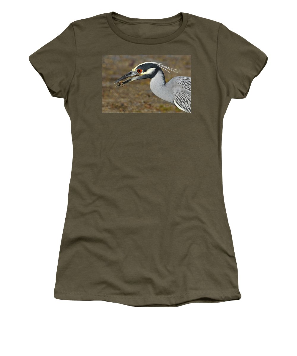 Yellow Crowned Night Heron Women's T-Shirt featuring the photograph Yellow Crowned Night Heron With Catch by Dave Mills