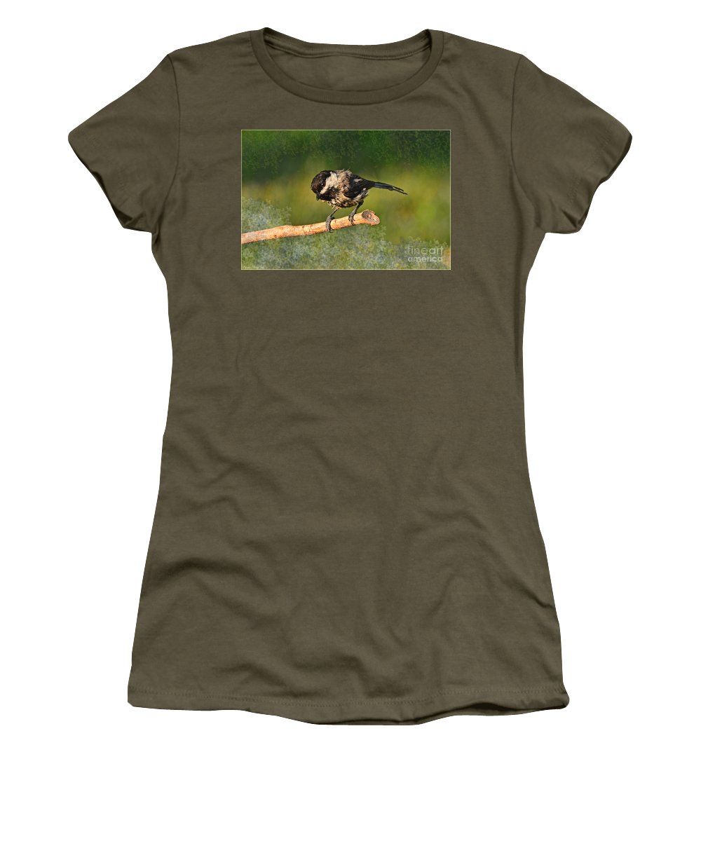 Nature Women's T-Shirt featuring the photograph Young Chickadee by Debbie Portwood