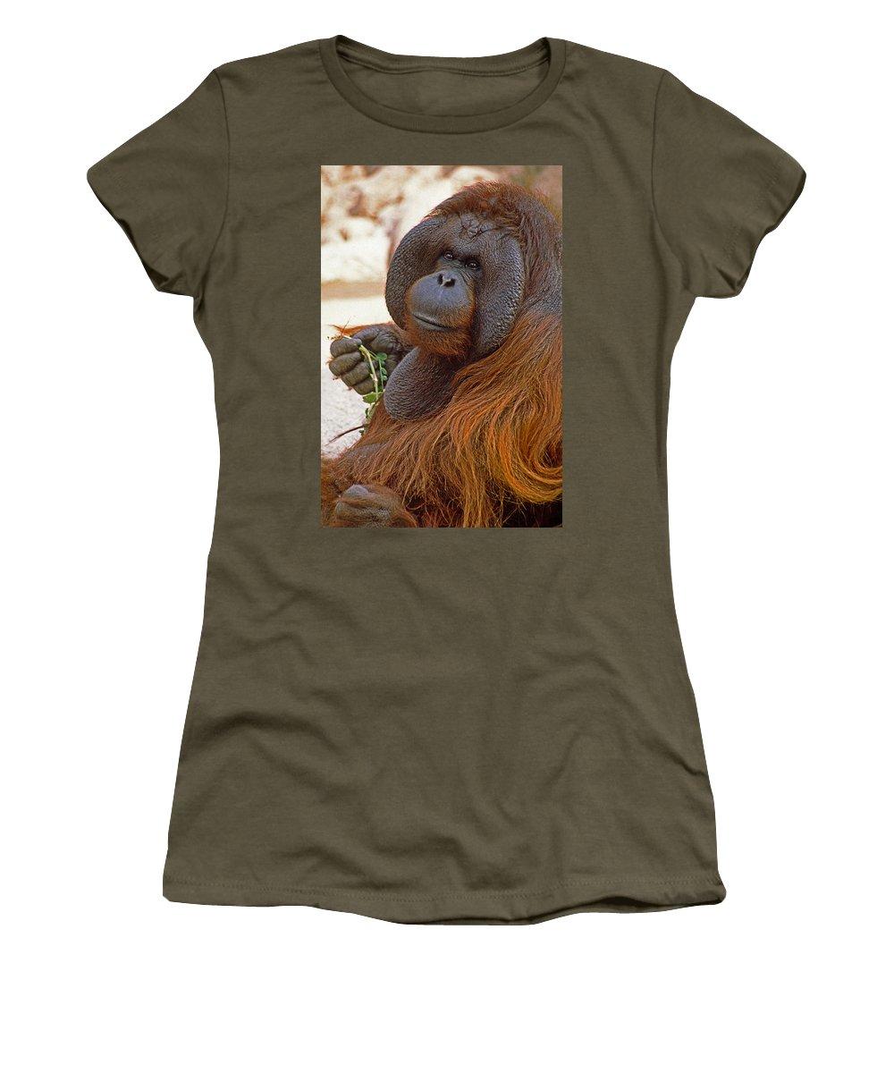 Orangutan Women's T-Shirt featuring the photograph Big Daddy by Michele Burgess