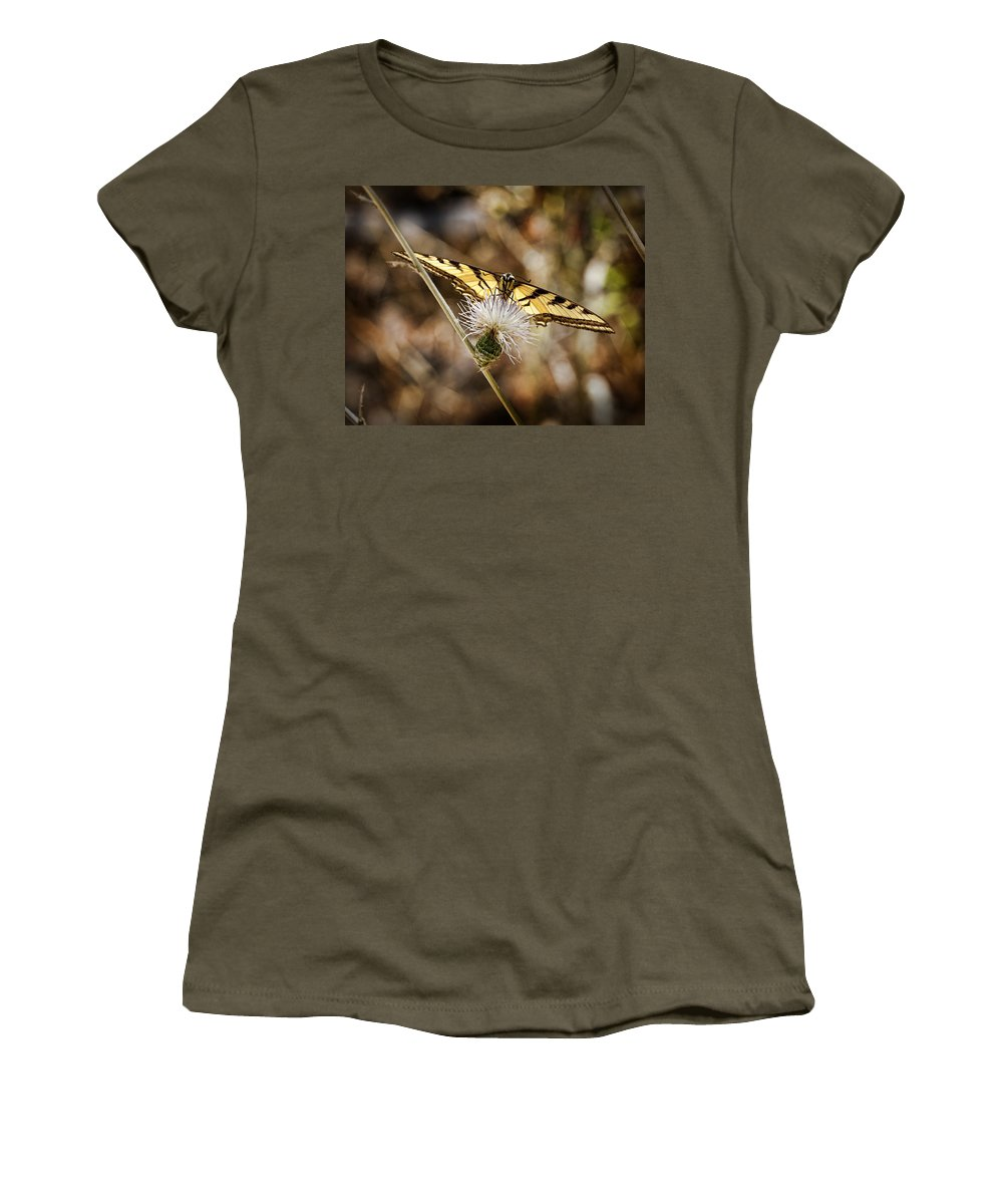 Butterfly Women's T-Shirt featuring the photograph Swallowtail Butterfly by Kelley King