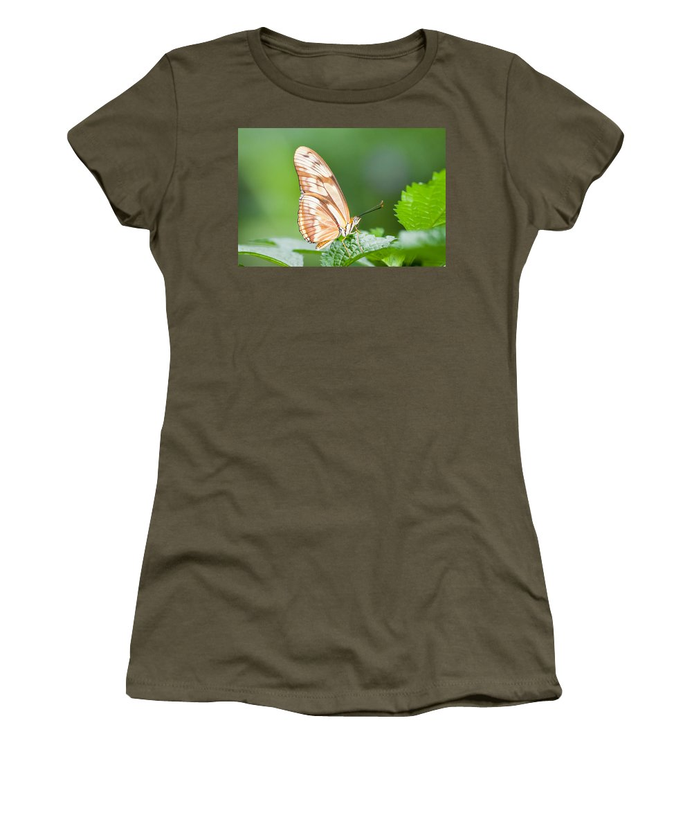Women's T-Shirt featuring the photograph Butterfly On Leaf by Alapati Gallery
