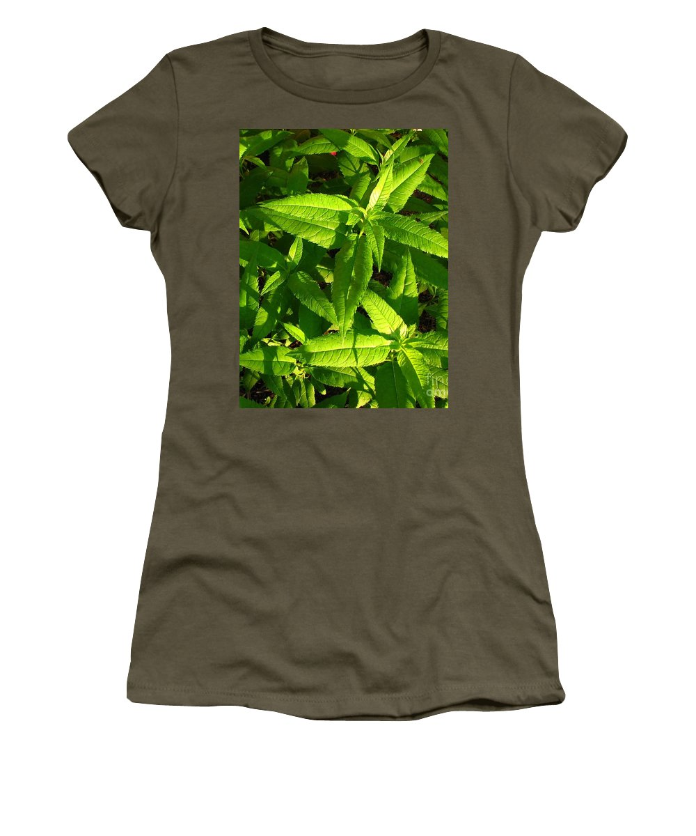Greenery Women's T-Shirt featuring the photograph Covering by Amanda Kessel