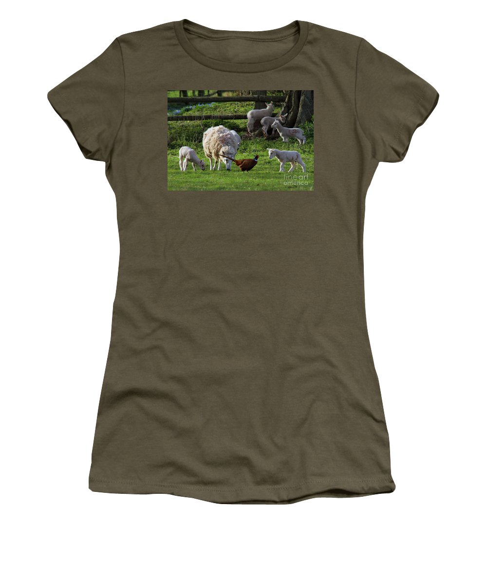 Pheasant Women's T-Shirt (Athletic Fit) featuring the photograph Close Encounter Of The Third Kind by Angel Tarantella