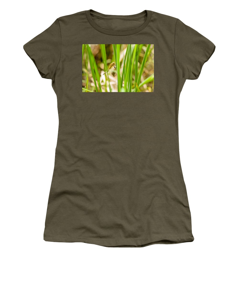Kiev Women's T-Shirt featuring the photograph Dragonfly On Reed Leaf by Alain De Maximy