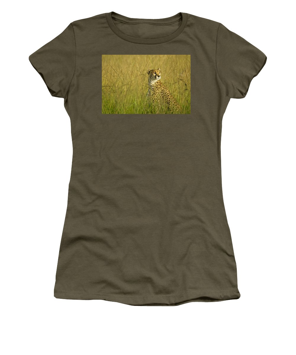 Africa Women's T-Shirt featuring the photograph Elegant Cheetah by Michele Burgess