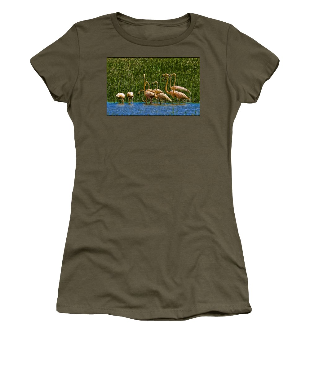 Flamingos Women's T-Shirt (Athletic Fit) featuring the photograph Flamingo Family by Galeria Trompiz