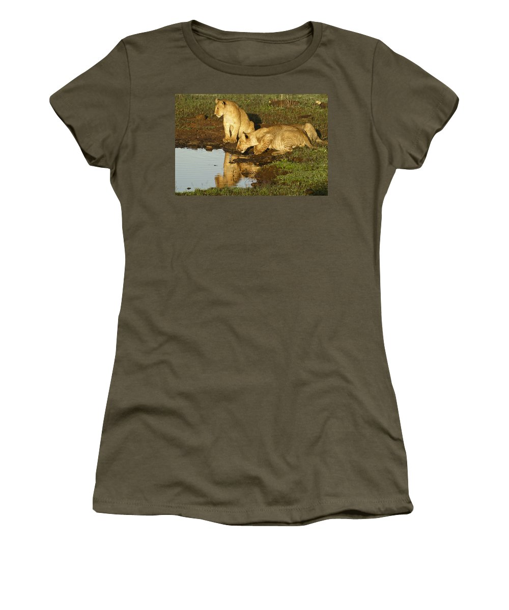 Lion Women's T-Shirt featuring the photograph I Can See Myself by Michele Burgess