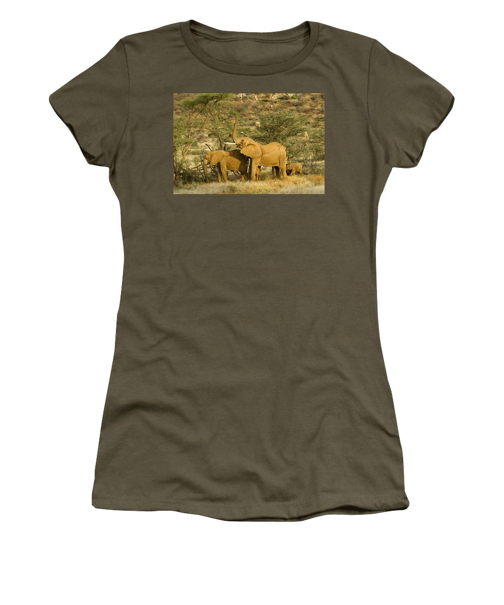 Africa Women's T-Shirt featuring the photograph It's A Stretch by Michele Burgess