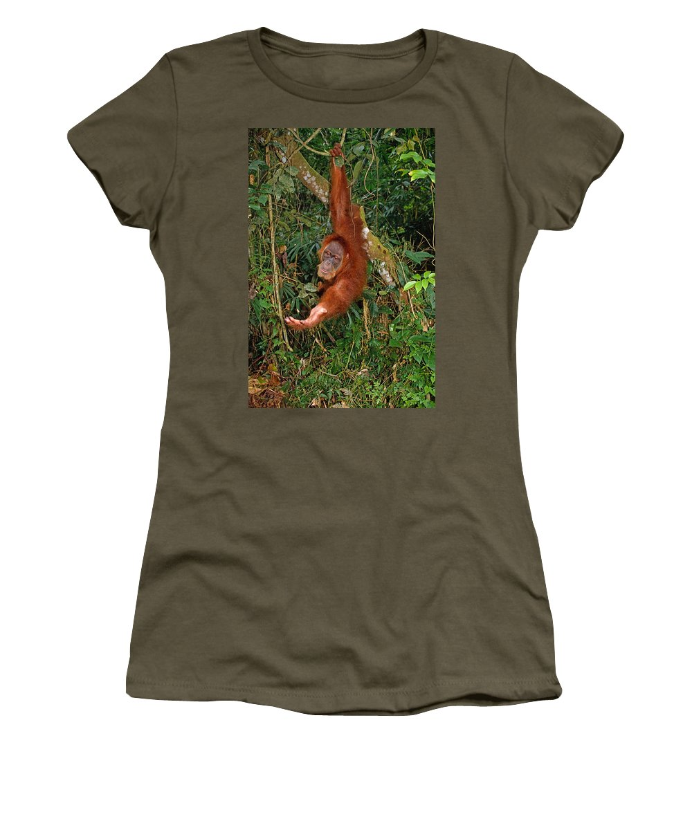 Orangutan Women's T-Shirt featuring the photograph Looking For A Handout by Michele Burgess