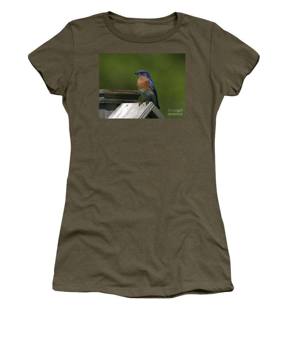 Blue Bird Women's T-Shirt featuring the photograph Mr Blue Bird by Robert Pearson