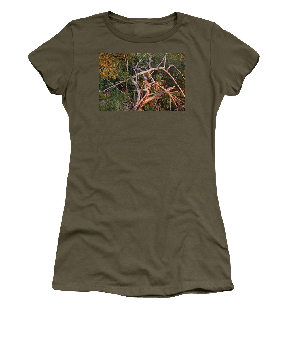 Sunset Women's T-Shirt featuring the photograph Orange Iguana by Rob Hans