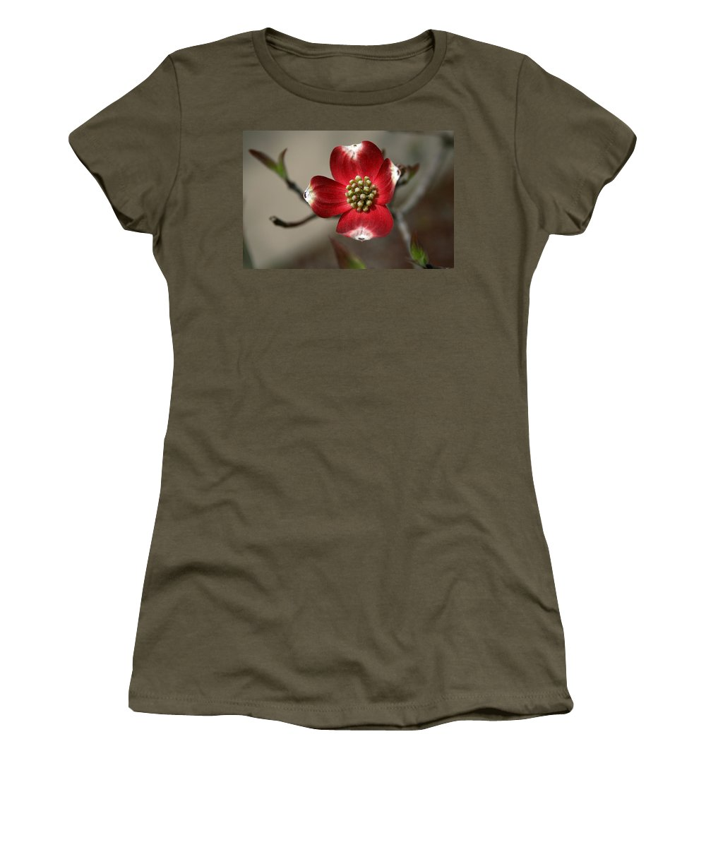 Flower Women's T-Shirt featuring the photograph Red Dogwood by Andrei Shliakhau
