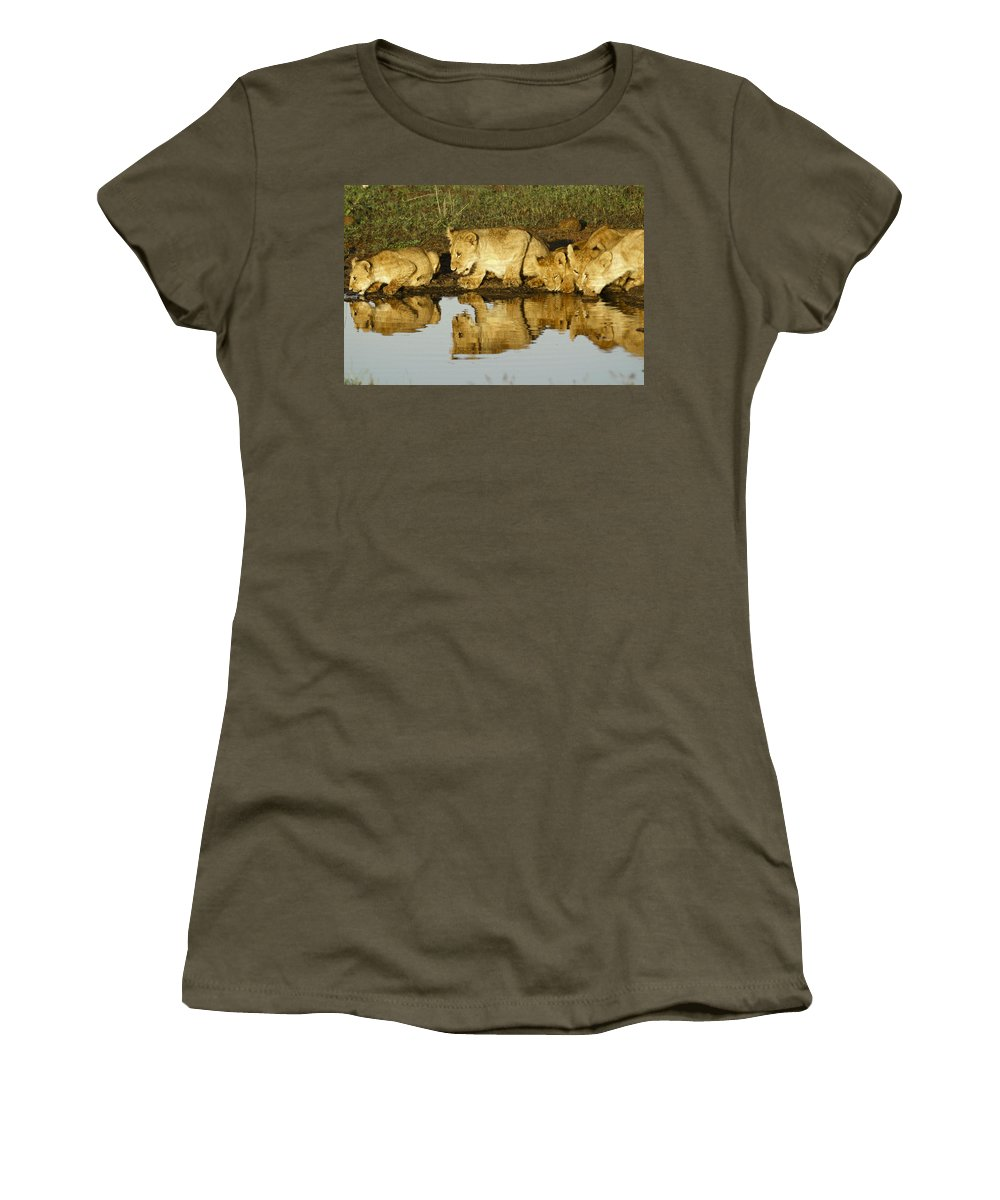 Lion Women's T-Shirt featuring the photograph Reflected Lions by Michele Burgess